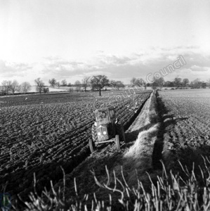 Ploughing, Spofforth